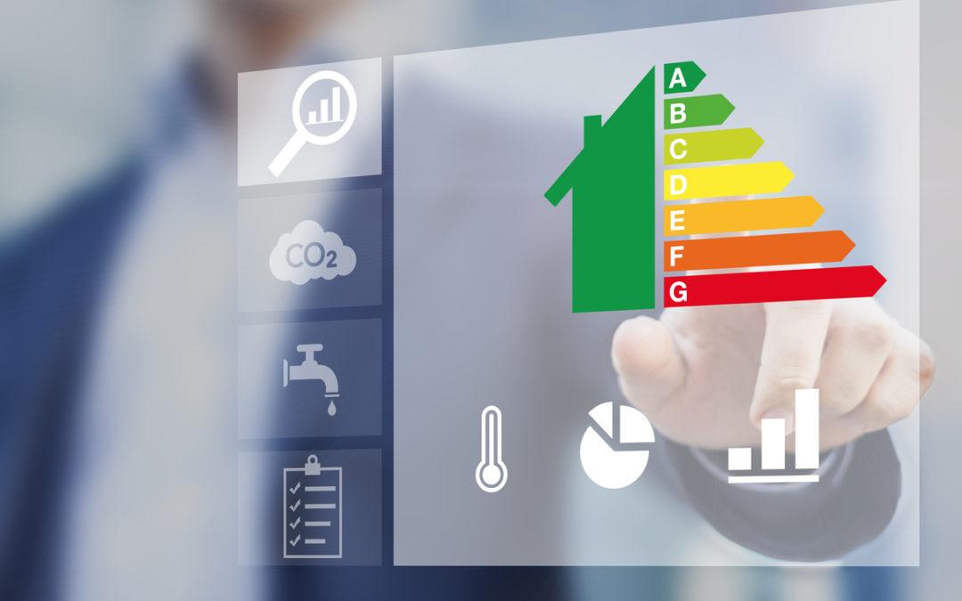 Sustentabilidade no setor imobiliário: veja 3 iniciativas da D.Borcath